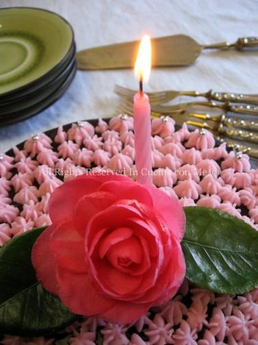 candelina copy.jpg